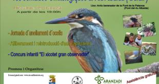 Primeres Jornades Ornitològiques al Riu Albaida