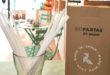 """El """"Xec Innovació"""" ajuda a posar en marxa la primera empresa de palletes ecològiques"""