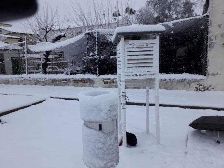 La nevada a Ontinyent ha estat la major registrada en 15 anys al terme