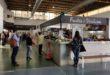 Albaida impartirà un curs en línia per a la digitalització del comerç local