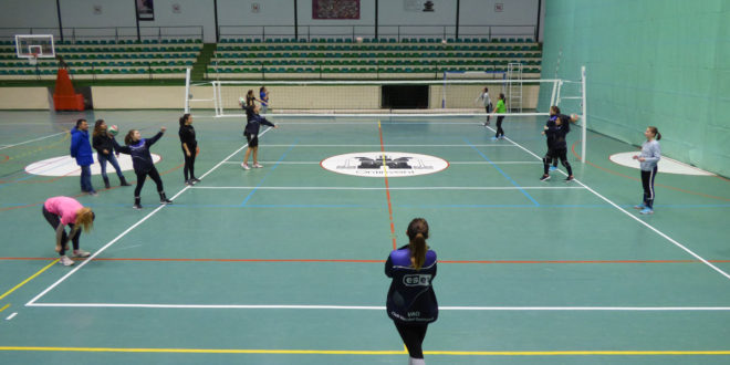 Augmenta un 18% els inscrits a les Escoles Esportives