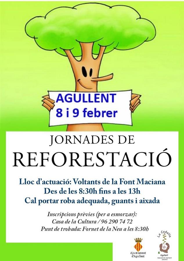 Cap de setmana de reforestacions a la serra d'Agullent